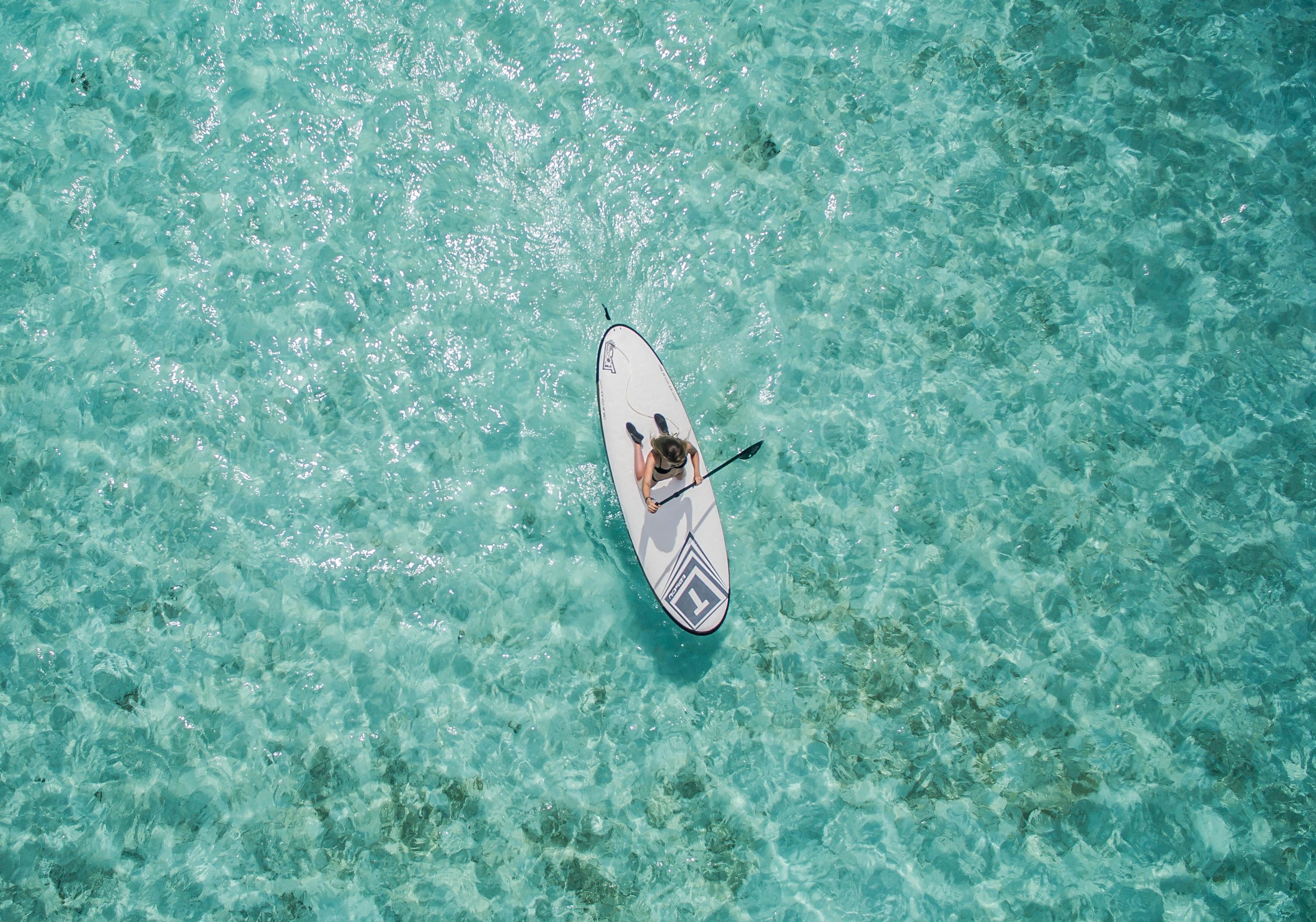 Paddleboard gulf